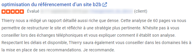 Audit Seo : Referencement Google thierry Dollon